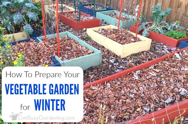 How To Prepare Your Vegetable Garden For Winter