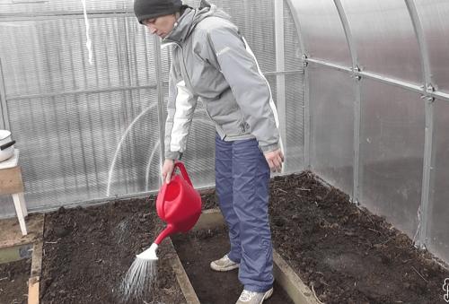 обработка земли в теплице