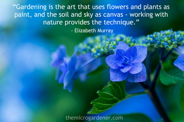 Gardening is the art that uses flowers and plants as paint, and the soil and sky as canvas - working with nature provides the technique.