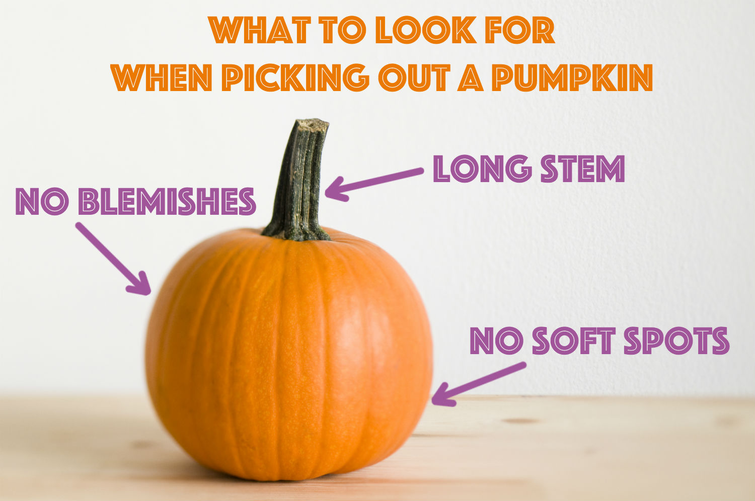 how to pick out a pumpkin getty